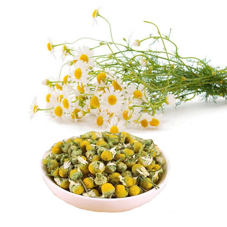 Green Stone chamomile stevia organic extract powder wholesale for food-2