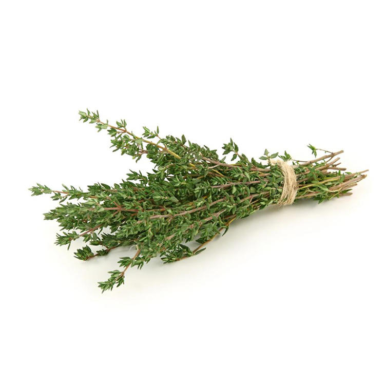 Plant Extracts For Skin Care Thyme Extract