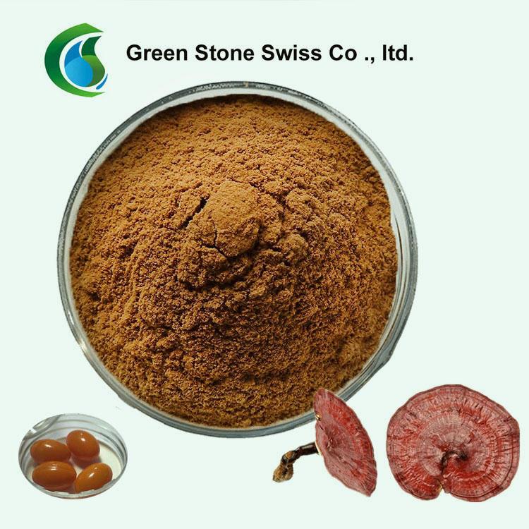 Ganoderma Lucidum ExtractHerbal Powder