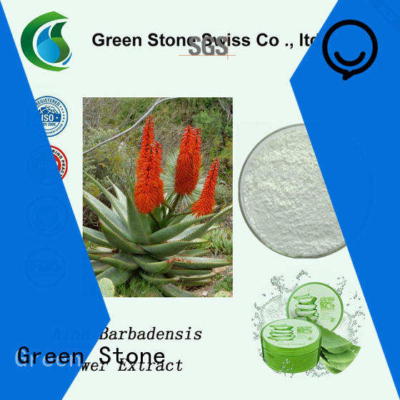 rosemary herbal extract powder owner for cosmetics
