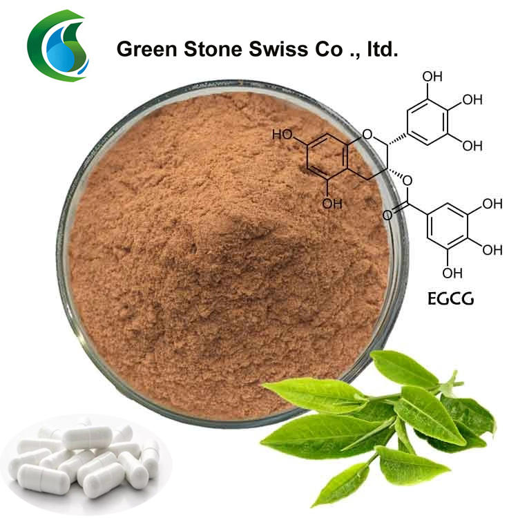 Herbal Powder Green Tea Extract