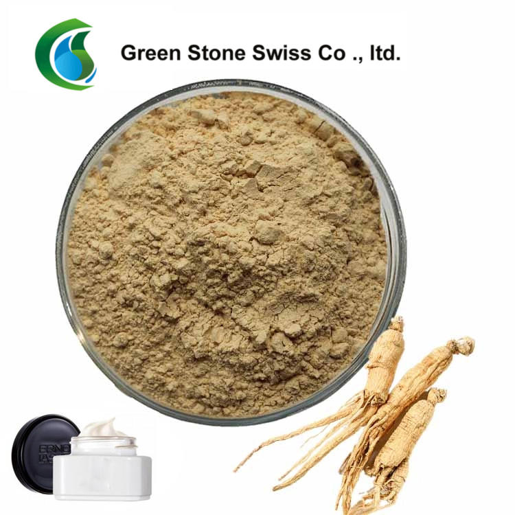 Chinese Medicine Powder Ginseng Root Extract