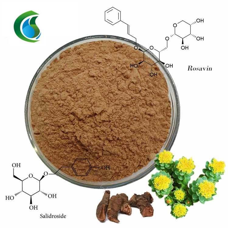 Natural Plant Extract Rhodiola Rosea Extract