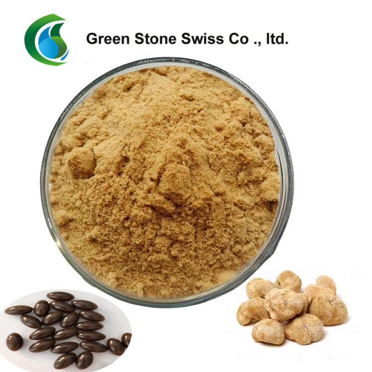 Pure Natural Plant Extracts Lion's Mane Mushroom Extract