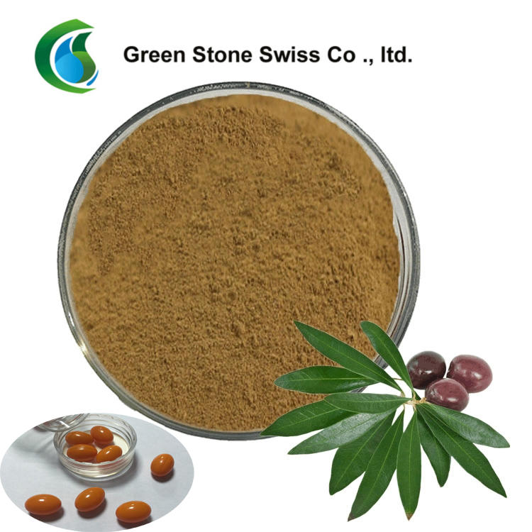 Concentrated Plant Extract Oleuropein Olive Leaf Extract