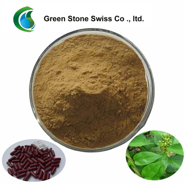 Antimicrobial Plant Extracts Gymnema Sylvestre Extract
