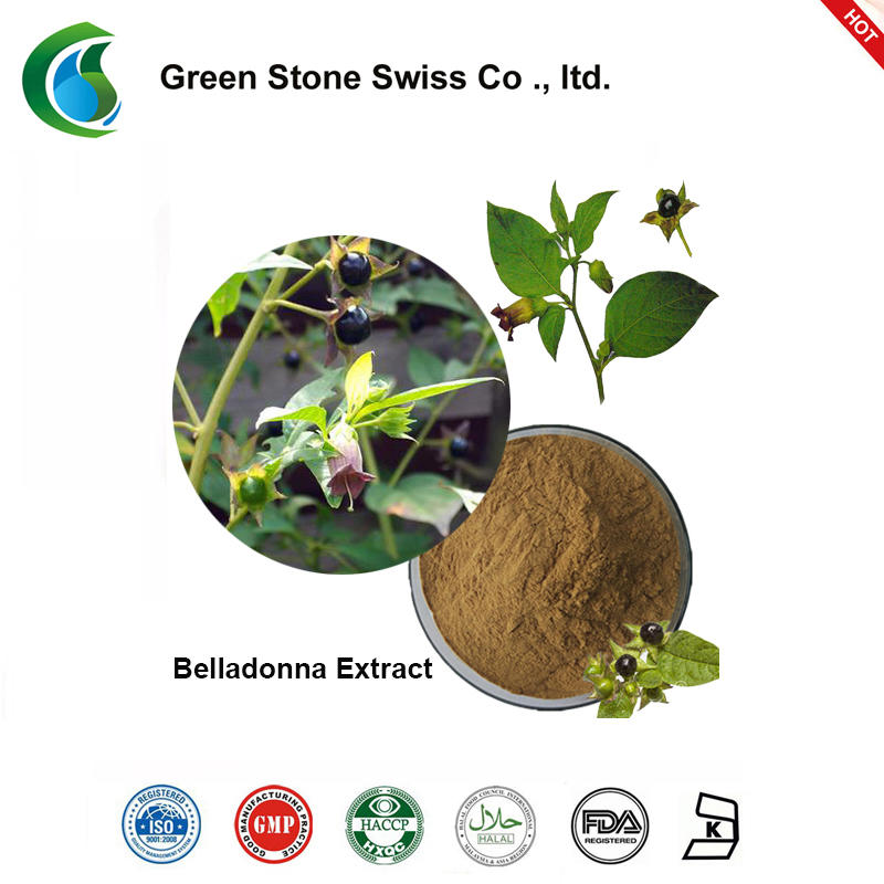 Crude Plant Extract Belladonna Extract