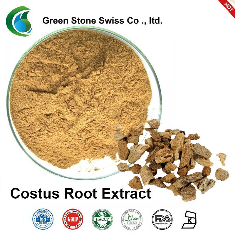 Plant Extract Powder Costus Root Extract