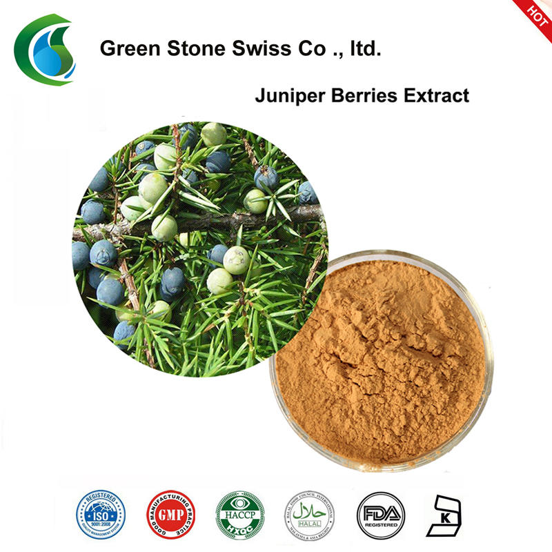 Juniper Berry Extract Pure Natural Plant Extracts