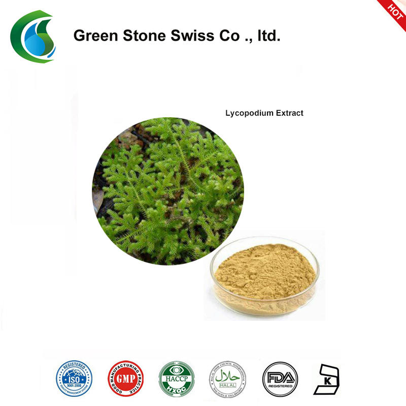 Lycopodium Bark Extract Natural Green Extracts