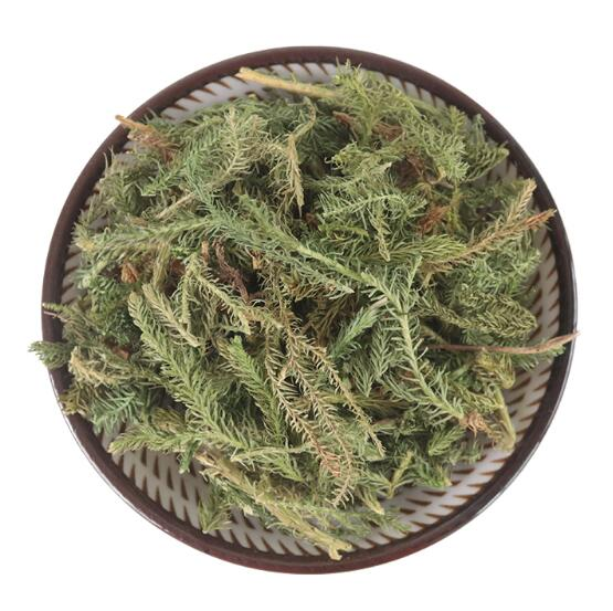 Green Stone barbadensis best herbal extracts producer for food-1