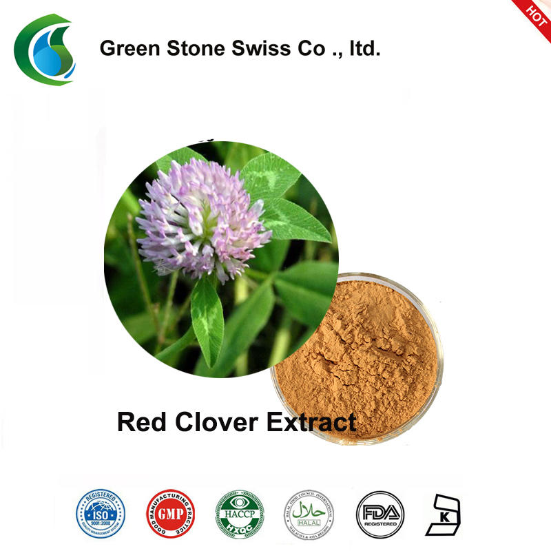 Natural Red Clover Extract Powder Chinese Herbal Extracts