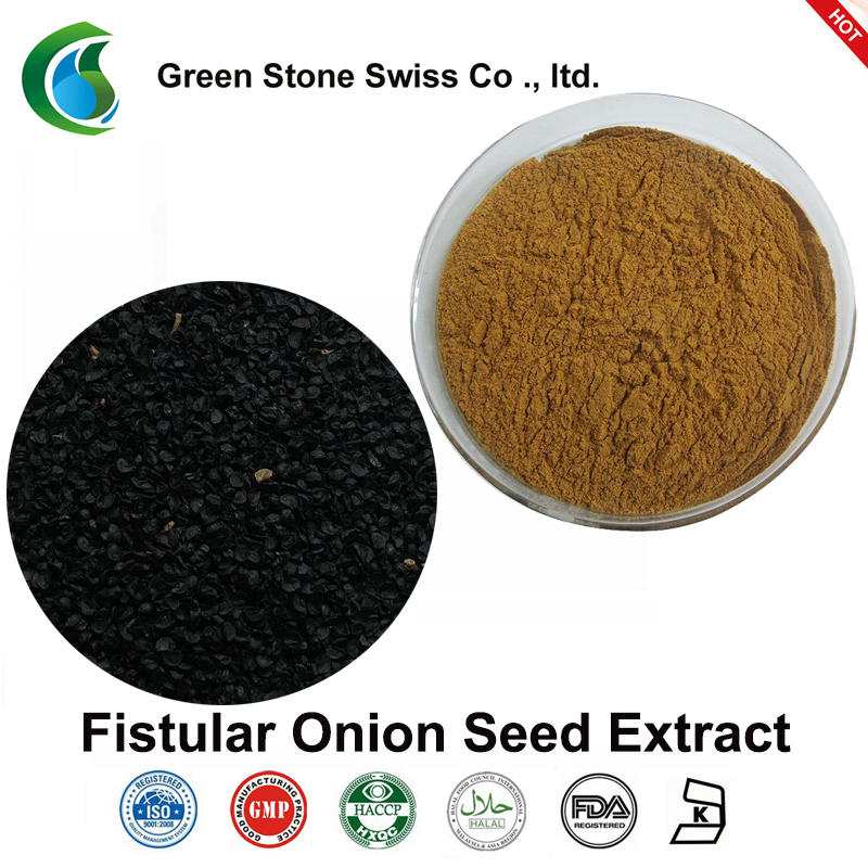 Fistular Onion Seed Extract