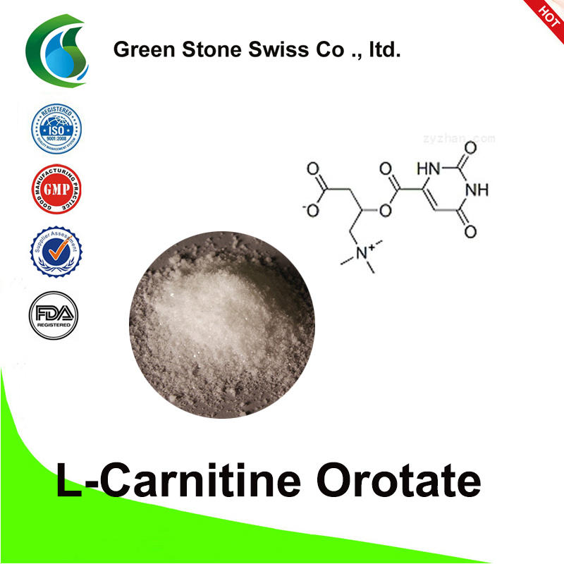 L-Carnitine Orotate