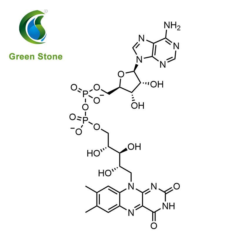 Flavin adenine dinucleotide