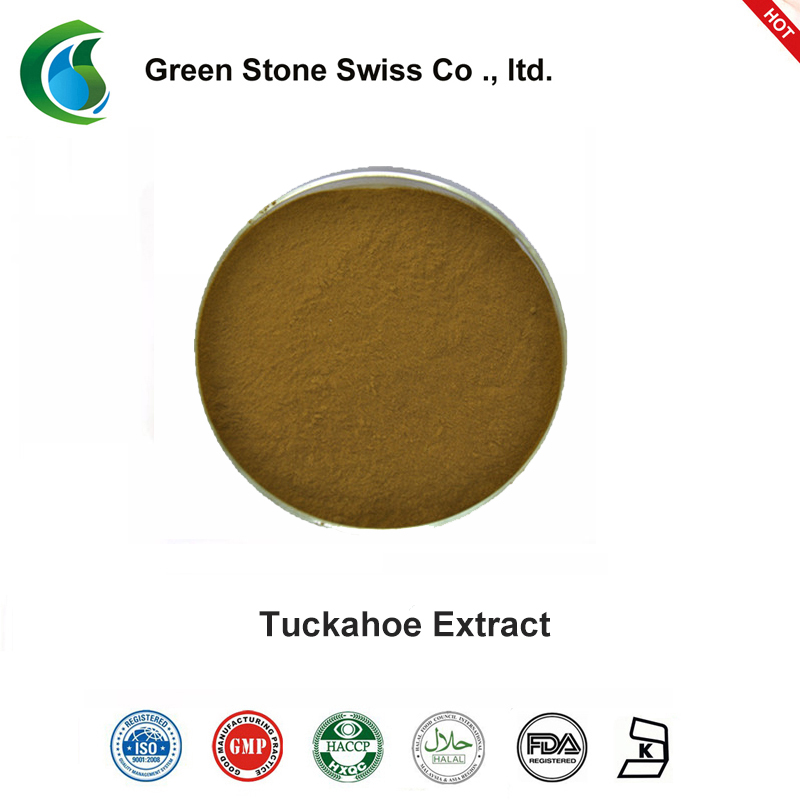 Green Stone widely used better stevia extract powder factory price for food-2