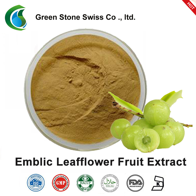 Green Stone grapefruit extract from plants wholesale for food-1