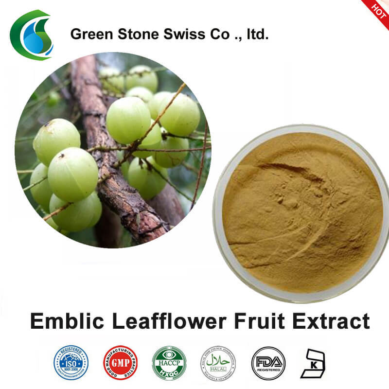 Emblic Leafflower Fruit Extract