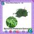first class bulk stevia powder thaliana personalized for food