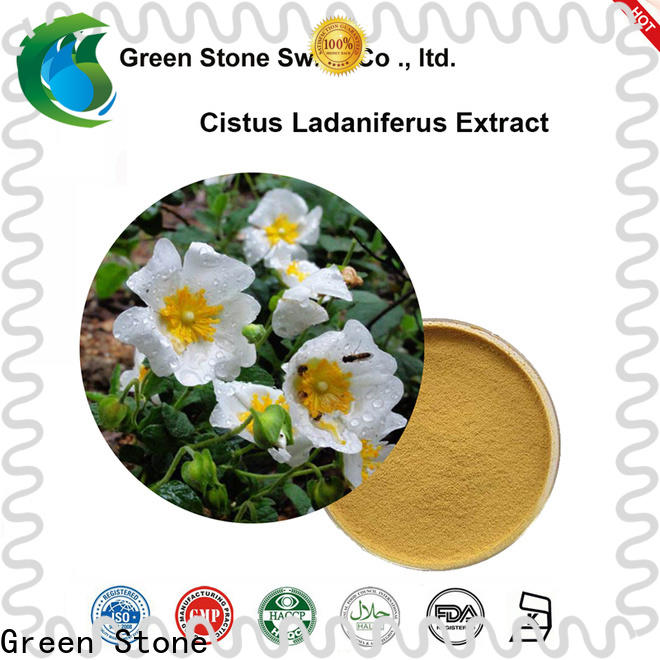 Green Stone hot sale herbal extraction plant factory price for food