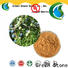 Green Stone mane defatting plant extracts factory price for food