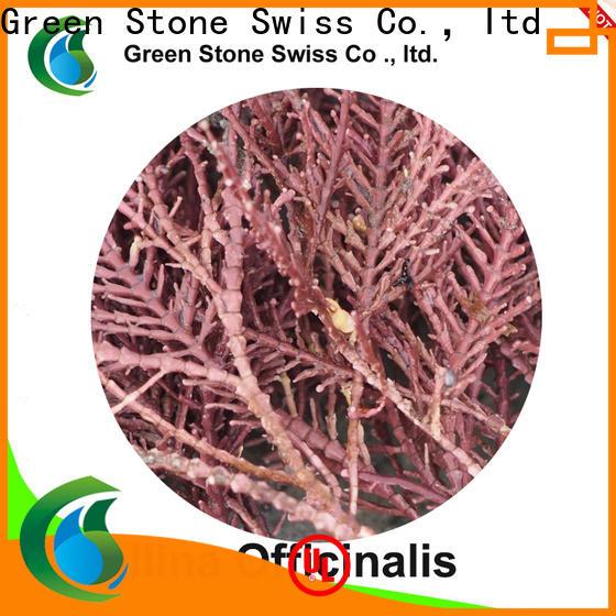 Green Stone best natural face moisturizer exporter
