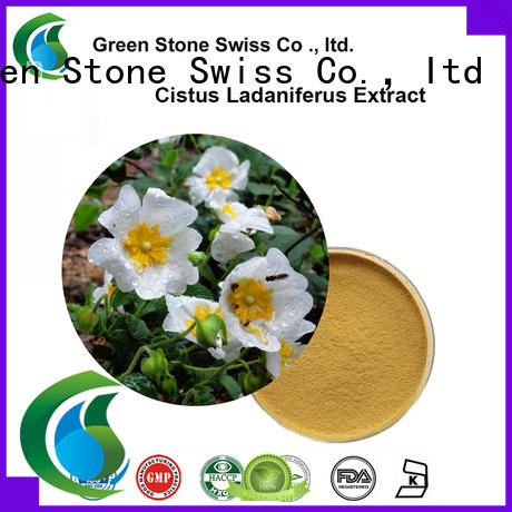 green thm pure stevia extract powder cocoa producer for food