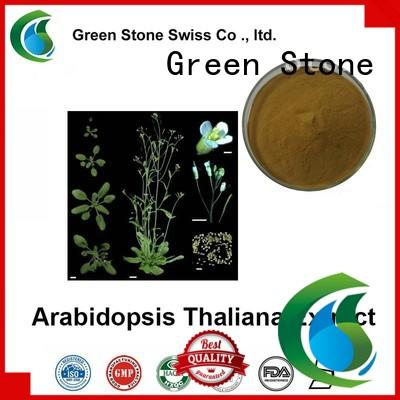 Green Stone shiitake crude plant extract supplier for cosmetics